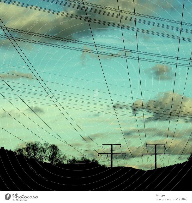 as the crow flies Clouds Fog Sunset Sunrise Multicoloured Beautiful Calm Relaxation Hope Light Peace Moody Morning Dusk Air Green Yellow Electricity pylon