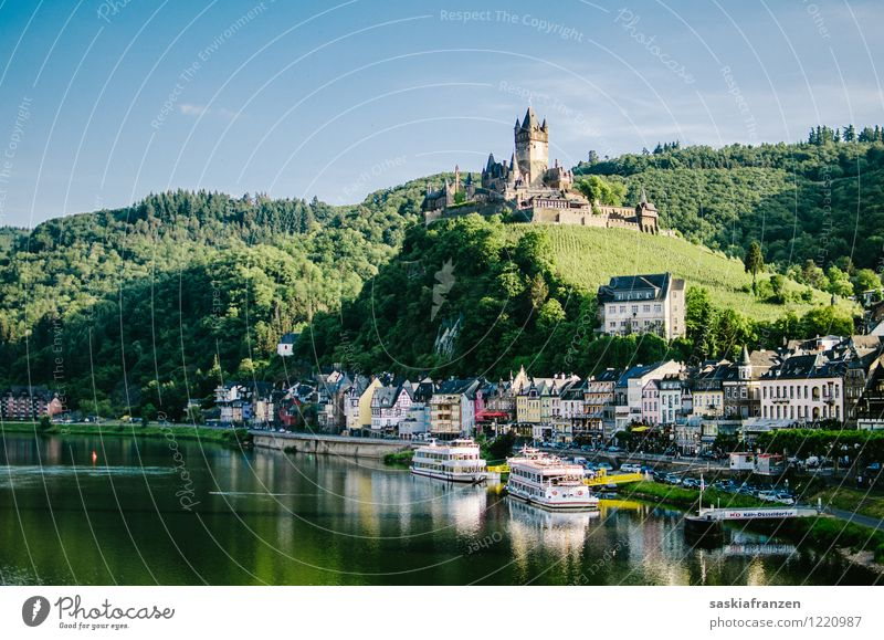 Cochem Environment Nature Landscape Water Sky Cloudless sky Summer Beautiful weather Forest Hill River bank Village House (Residential Structure) Castle