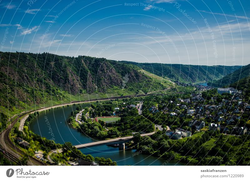Cochem II Environment Nature Landscape Plant Water Sky Sunlight Summer Beautiful weather Tree Forest Hill River bank Village Outskirts Populated
