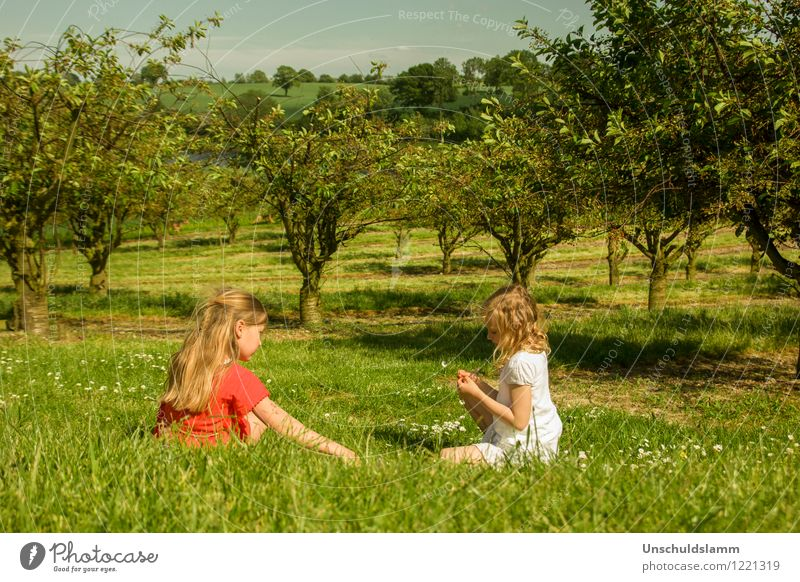 Human being Child Nature Green Summer White Tree Red Landscape Joy Girl Emotions Meadow Playing Happy Garden