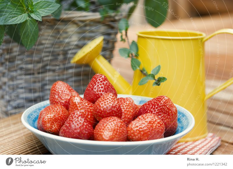 Delicious Strawberries III Fruit Organic produce Vegetarian diet Bowl Watering can Authentic Natural Sweet To enjoy Mint Basket Wooden table Exterior shot