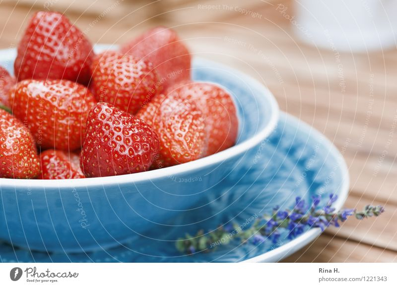 Delicious strawberries Fruit Strawberry Vegetarian diet Plate Bowl Natural Juicy Sweet Wooden table Pure Exterior shot Deserted Shallow depth of field