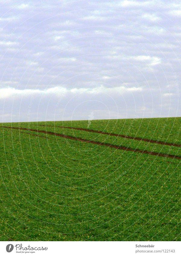 Nature Sky Green Plant Far-off places Spring Freedom Landscape Line 2 Field Horizon Empty Tracks Infinity Boredom