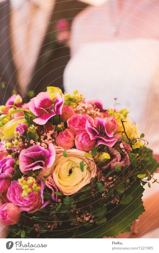 Yes, I want Human being Couple Partner Plant Flower Rose Leaf Blossom Beautiful Green Pink Happy Bouquet Matrimony Wedding Colour photo Interior shot Close-up