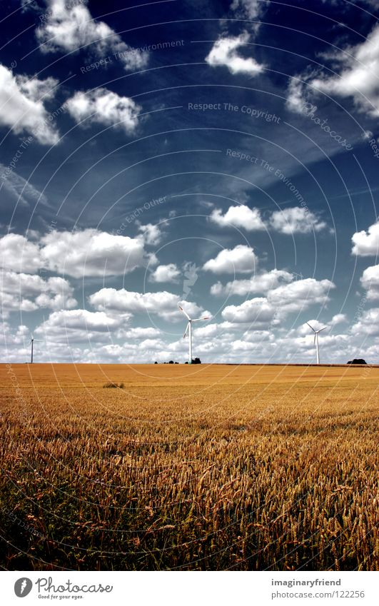 field with windmills Field Cornfield Agriculture Barley Wheat Rye Summer Clouds Sky Countries Electricity Science & Research Power Grain Landscape country