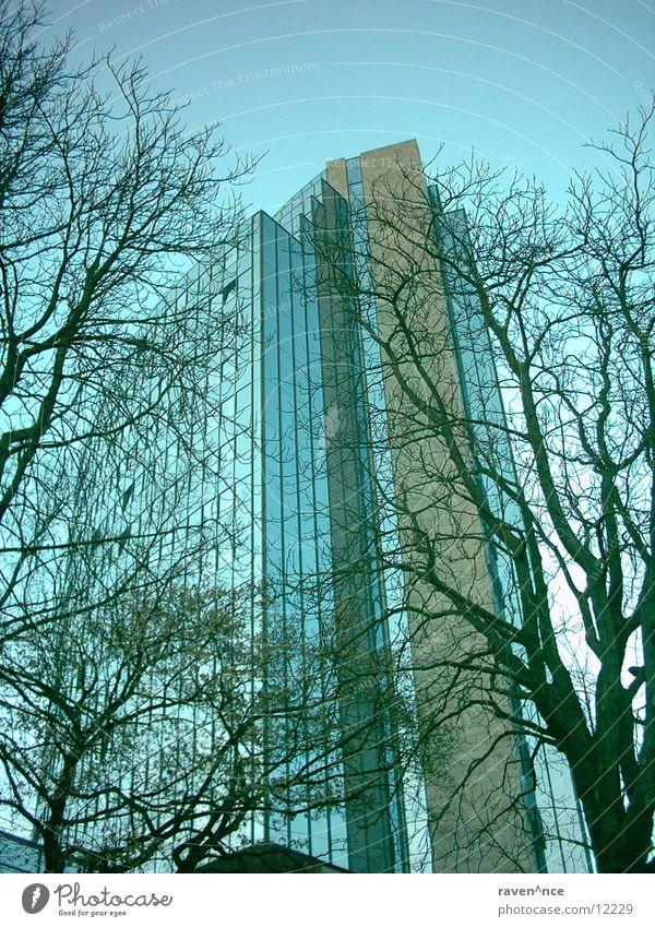 Sky Tree Architecture Glass Concrete Mirror Maritime Ulm