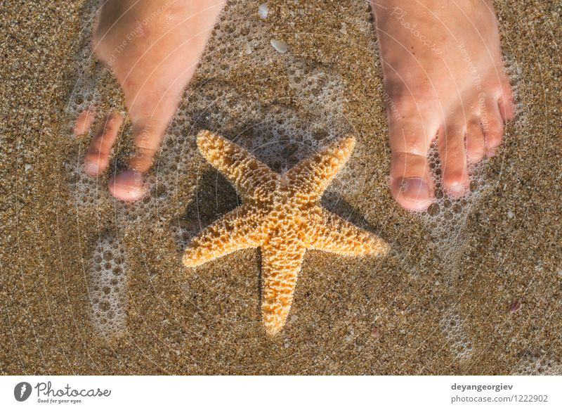 Starfish and feet on the beach Design Body Relaxation Vacation & Travel Summer Sun Beach Ocean Human being Girl Woman Adults Feet Nature Sand Coast Blue water