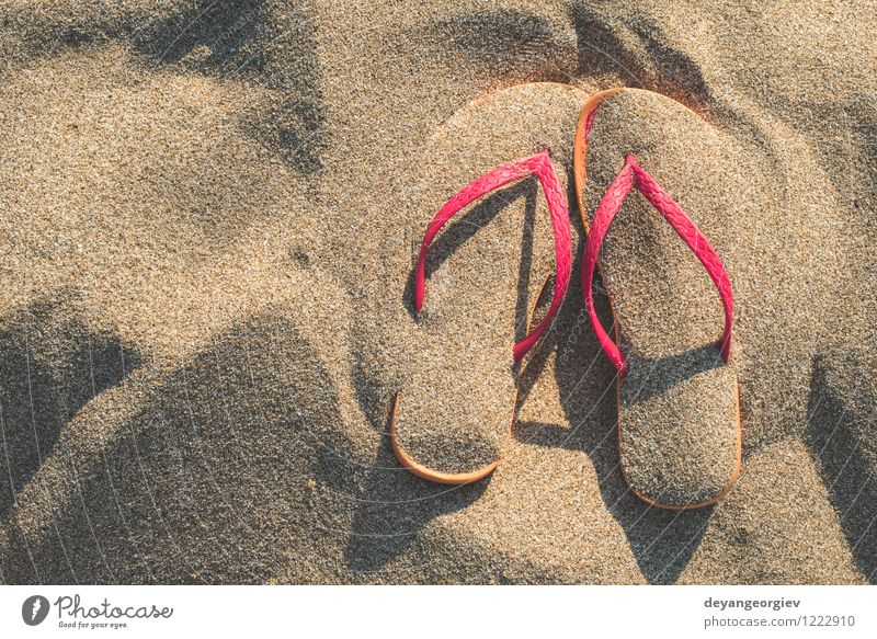 Pink sandals on the beach in the sand Relaxation Leisure and hobbies Vacation & Travel Tourism Summer Sun Beach Ocean Nature Sand Fashion Footwear Flip-flops