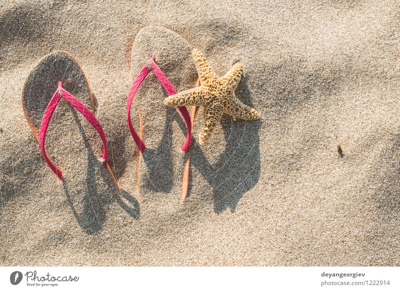 Pink sandals on the beach in the sand Nature Vacation & Travel Blue Summer Sun Relaxation Ocean Beach Fashion Bright Sand Leisure and hobbies Tourism Footwear