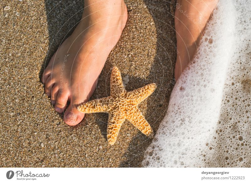 Starfish and feet on the beach Human being Woman Nature Vacation & Travel Blue Summer Sun Relaxation Ocean Girl Beach Adults Coast Feet Sand Design