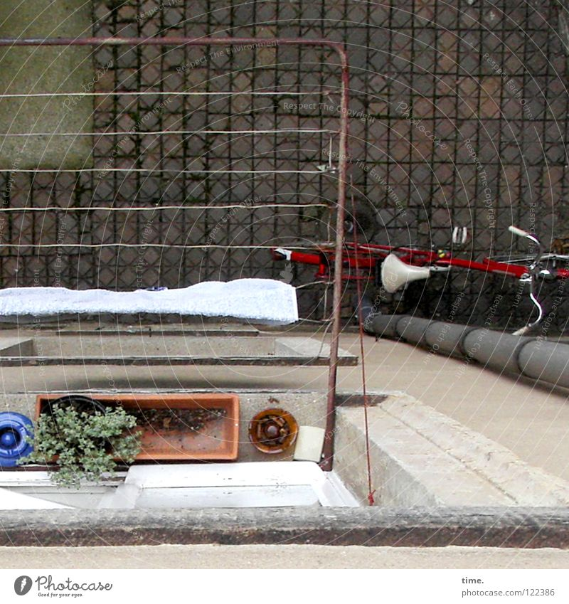 Window Bicycle Tall Concrete Idyll Transience Level Traffic infrastructure Cobblestones Downward Backyard Towel Drainage Foliage plant Interior courtyard