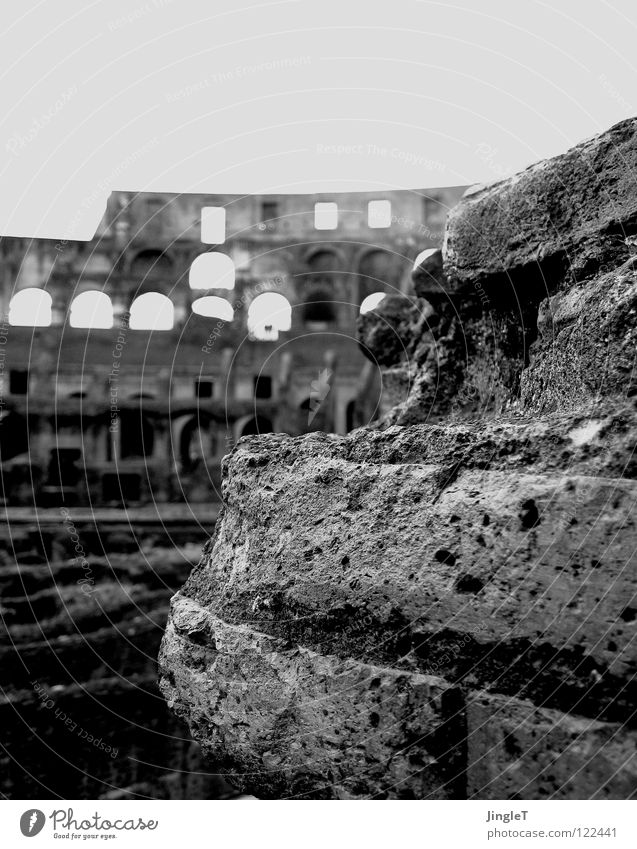 translucent heroic epic Hollow Window Round construction Pore Ancient Gladiator Ruin Rome Colosseum Landmark Monument Printed Matter tripartite finalisation