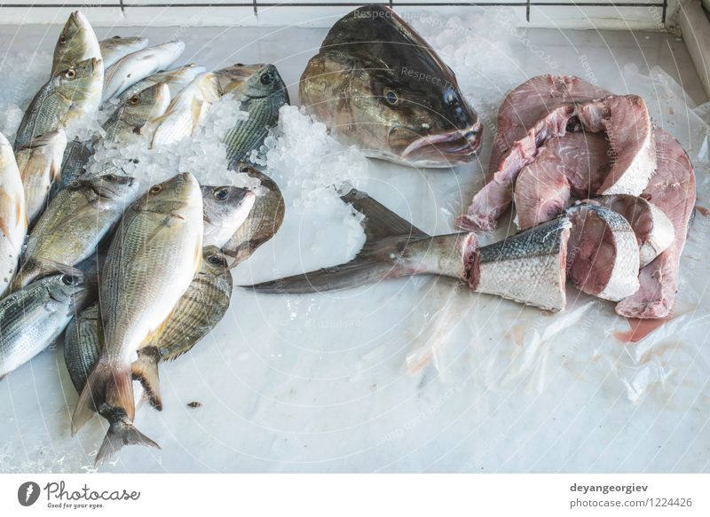 Fish on ice in the market Meat Seafood Shopping Ocean Industry Animal Sell Fresh Delicious fish bass Frozen healthy fishing Raw cold Storage catch silver