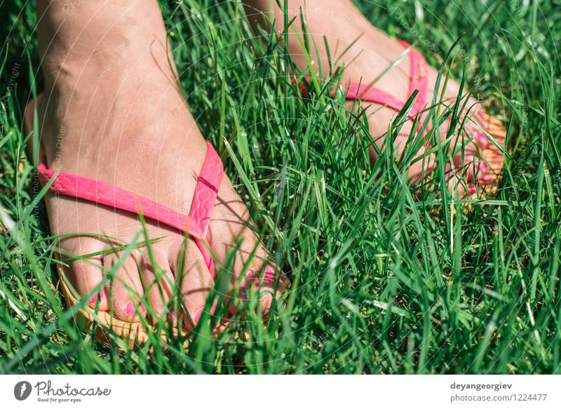 Feet on green meadow Human being Woman Nature Beautiful Green Summer White Relaxation Flower Joy Girl Adults Environment Meadow Grass Natural