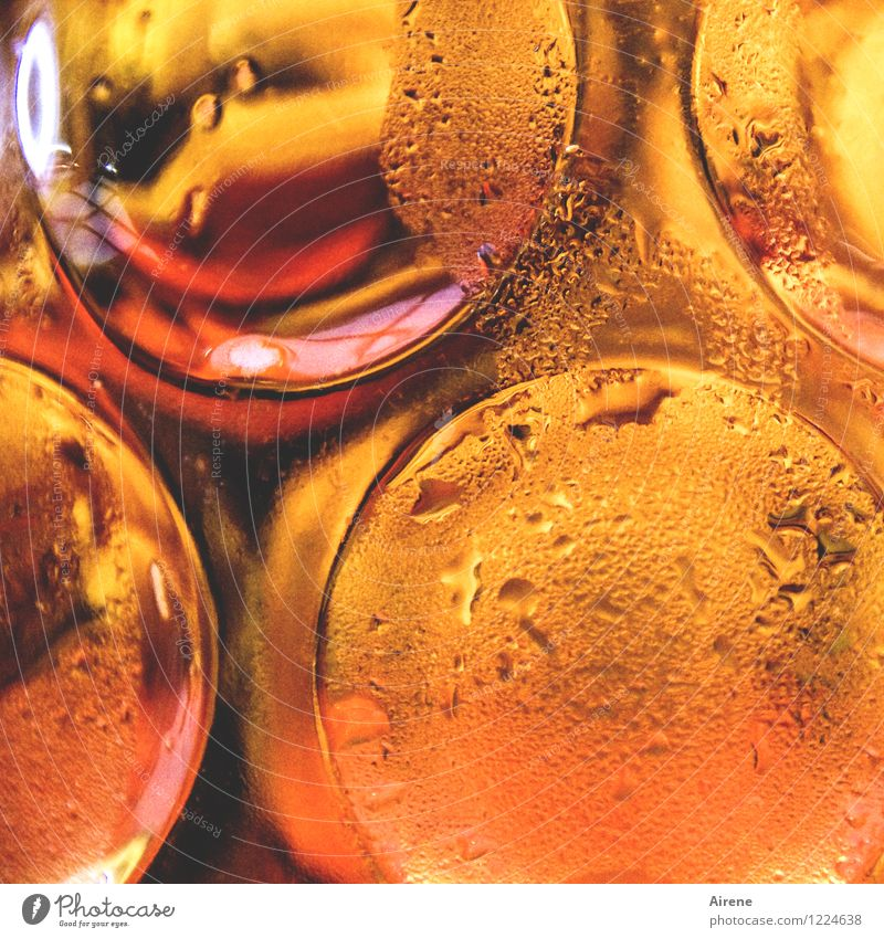 Red Cold Yellow Orange Fresh Gold Glass To enjoy Beverage Joie de vivre (Vitality) Drinking Beer Fluid Fairs & Carnivals Refreshment Alcoholic drinks