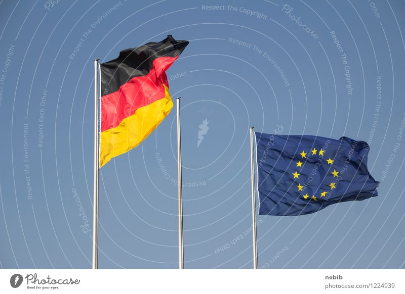 Blue Red Black Yellow Together Power Success Communicate Future Europe Star (Symbol) Sign Might Safety Federal eagle Flag
