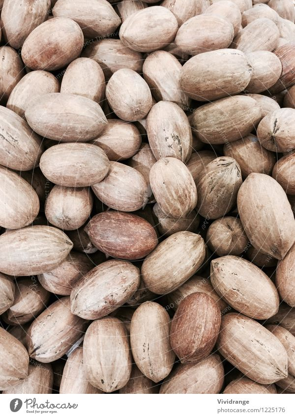 Pecan nuts, backgorund Food Dairy Products Nutshell Nutrition Eating snack Lifestyle Shopping Healthy Wellness Agriculture Forestry farming Nature Tree