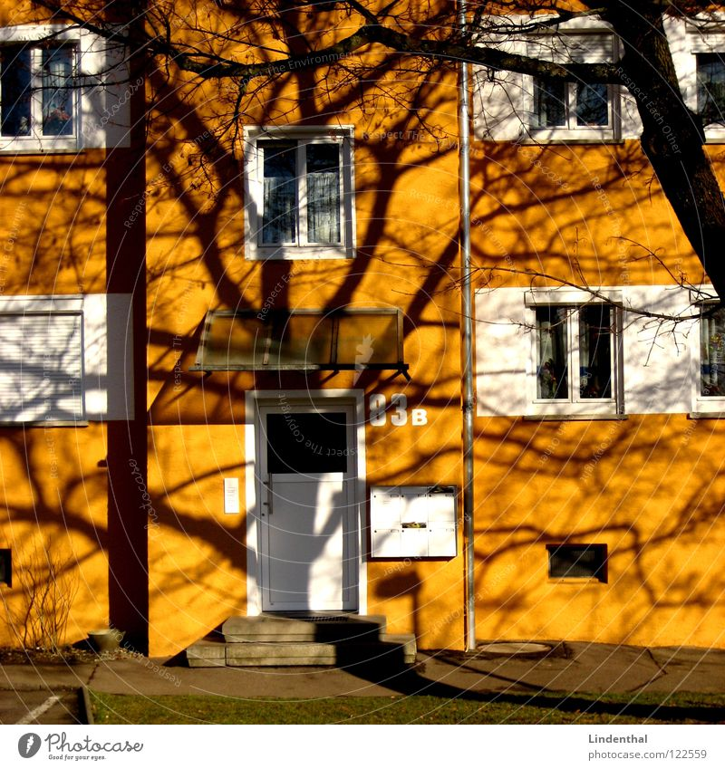 Tree House (Residential Structure) Window Door Branch Entrance Mailbox Roller shutter