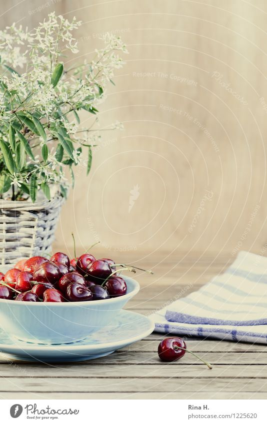 Cherries without medlar Fruit Organic produce Vegetarian diet Plate Bowl Summer Pot plant Blossoming Healthy Bright Delicious Sweet Wooden table Towel Napkin