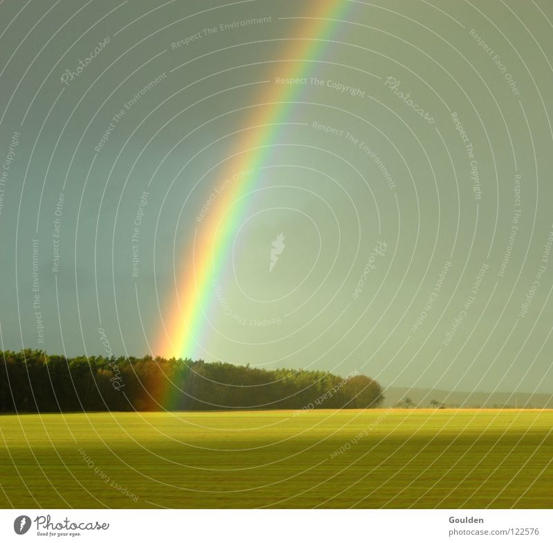 0815 Rainbow Field Canola Forest Ecological Deities Religion and faith Hope Peace Landscape Weather Far-off places Nature Organic produce organic field Kitsch
