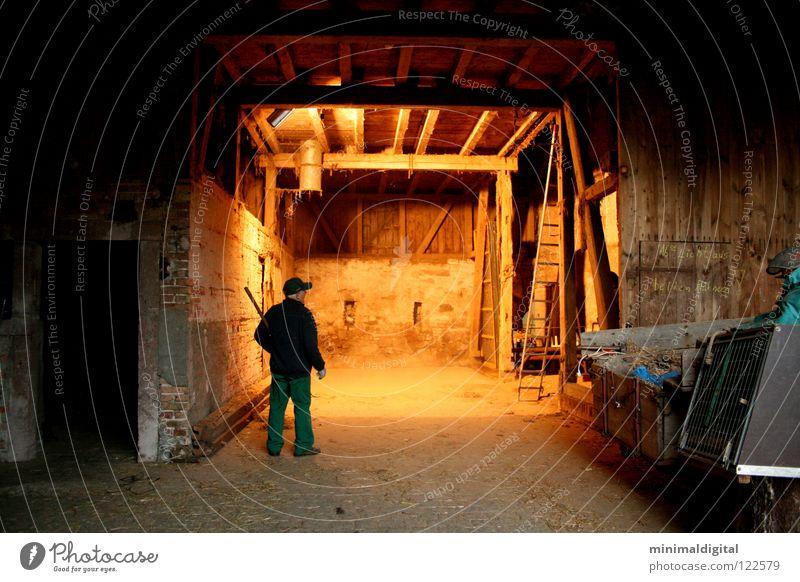 Lights out. Dark Awareness Farmer Pitchfork Wood Dust Barn fowl Cap Straw Senior citizen Shadow Bright Gate Dirty Lamp Contrast
