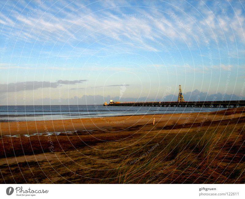 end of season End of the season Autumn Autumnal landscape Coast Multicoloured Seasons Beach Ocean Clouds Transience October November Bad weather North Sea