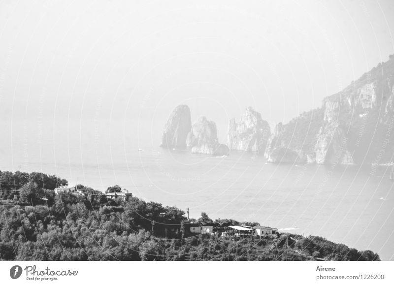 Water White Ocean Landscape Far-off places Black Coast Bright Rock Air Fog Island Elements Wanderlust Haze Cliff