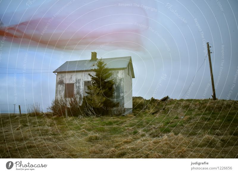 Iceland Environment Nature Landscape House (Residential Structure) Hut Ruin Movement Dance Exceptional Dark Natural Moody Loneliness Uniqueness Transience
