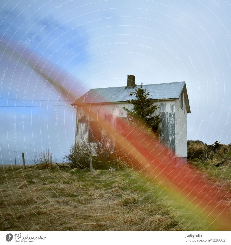 Nature Green Red Loneliness House (Residential Structure) Cold Environment Movement Natural Exceptional Moody Crazy Dance Transience Past Hut