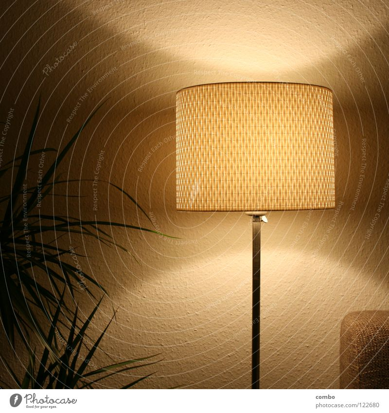 Retro lamp in the living room Plant Green Leaf Lamp Standard lamp Lampshade Design Shadow Light Oval Physics Sofa Cloth Gray Wallpaper Ingrain wallpaper White