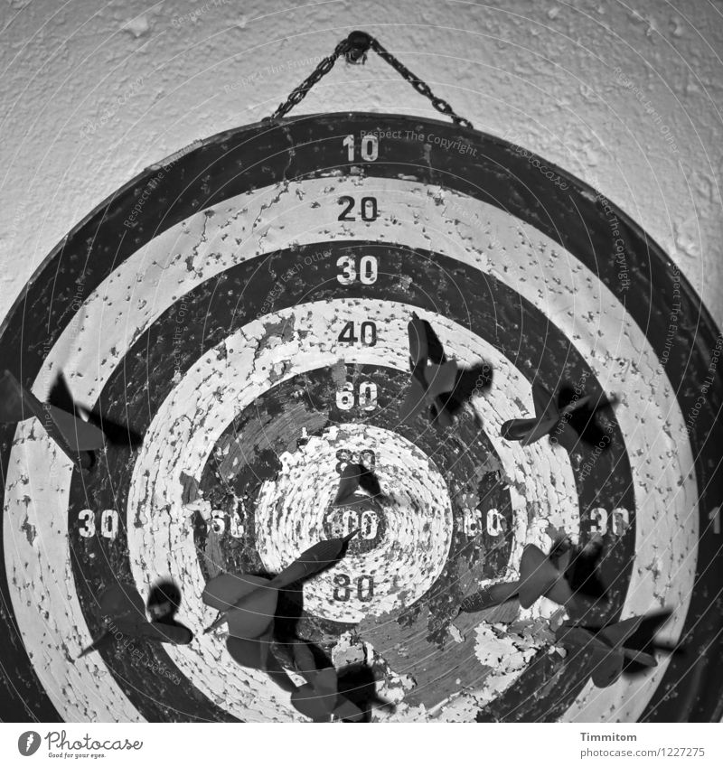 Childhood recollection. Arrow throw. Sports Darts Dartboard Wall (barrier) Wall (building) Digits and numbers Old Broken Gray Black White Emotions Memory Damage