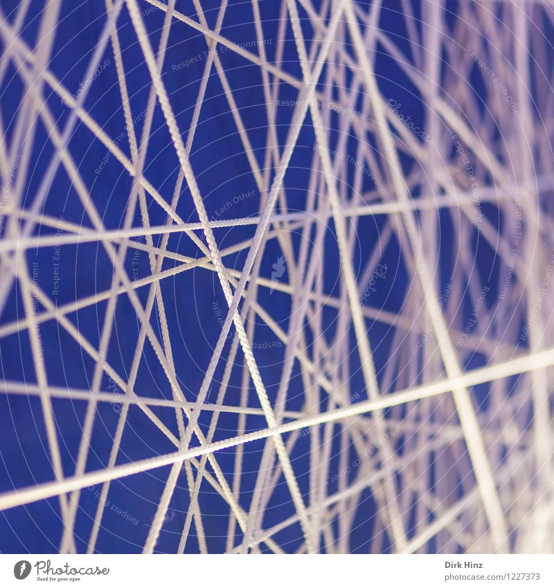 network Sign Line String Knot Net Network Sharp-edged Blue White Flexible Design Success Communicate Complex Problem solving Puzzle Surrealism Symmetry
