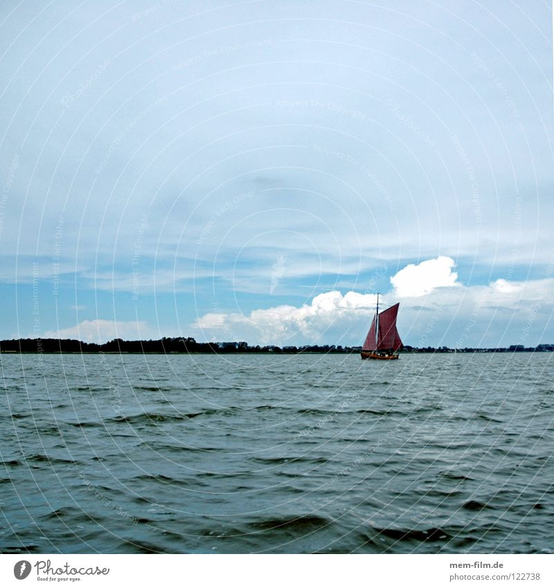 Sunday Sailboat Fisherman Fishing boat Red Brown Fishery Boddenlandscape NP Fischland-Darss-Zingst Rigging Sailing Summer Ocean Catch Ecological Interior lake