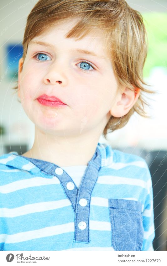 Child Blue Beautiful Face Eyes Boy (child) Hair and hairstyles Head Infancy Blonde Mouth Observe Nose Cool (slang) Lips Ear