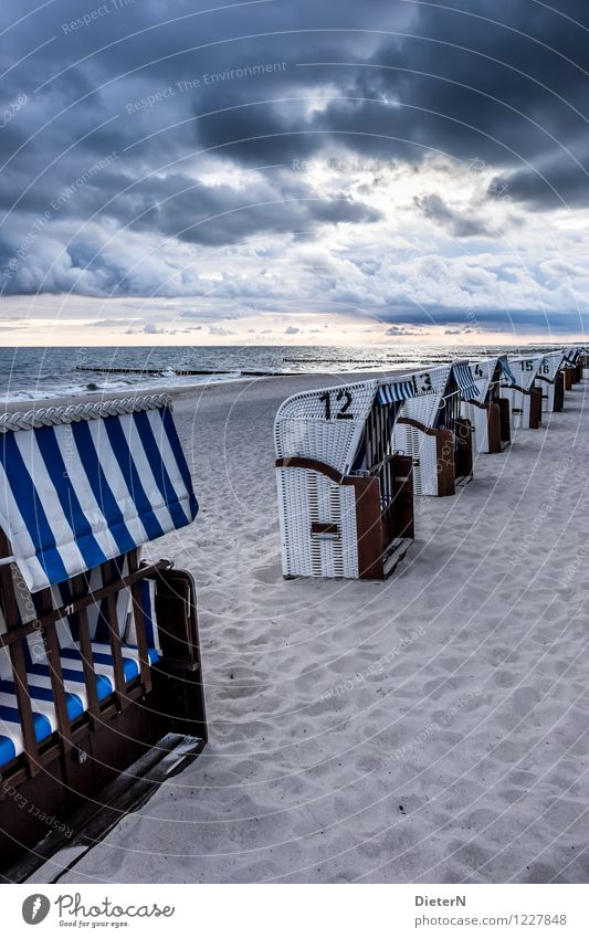In the morning Environment Landscape Sand Sky Clouds Storm clouds Sunrise Sunset Summer Climate Weather Wind Gale Waves Coast Baltic Sea Ocean Blue Black White