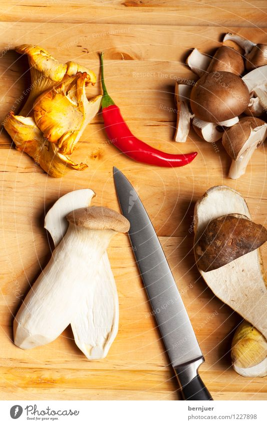 Autumn time, Mushroom time Vegetarian diet Diet Table Nature Wood Delicious Brown Knives Blade Edible Eating Gourmet Raw Natural Verdant Holiday season organic