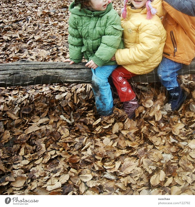Child Winter Joy Leaf Cold Autumn Playing Warmth Brown Physics Pants Jacket Tree trunk Freeze Romp Nursery school child