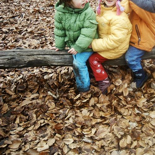 yesterday at the playground ... SECOND Child Nursery school child Pants Jacket Cold Autumn Winter Playing Romp Freeze Leaf Tree trunk Brown Multicoloured Joy