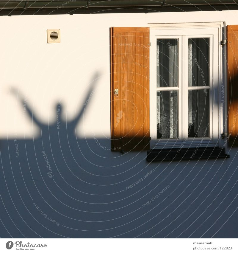 shadow man Man Adults Arm Hand Beautiful weather Window Large Shutter Wall (building) Hands up! Hello Wave hallelujah Shadow Upper body Sunlight Lattice window