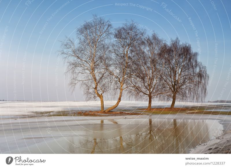 Early Spring near Minsk Environment Nature Landscape Elements Earth Sand Air Water Sky Cloudless sky Sunlight Climate Weather Beautiful weather Ice Frost Snow