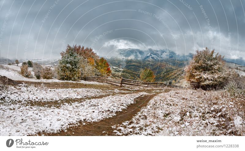 October snow Sky Nature Plant Tree Landscape Leaf Clouds Forest Environment Mountain Autumn Meadow Grass Snow Wood Rock