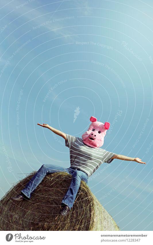 Joy Funny Feminine Art Pink Sit Esthetic Tall Mask Work of art Costume Carnival costume Swine Comical Funster Pork