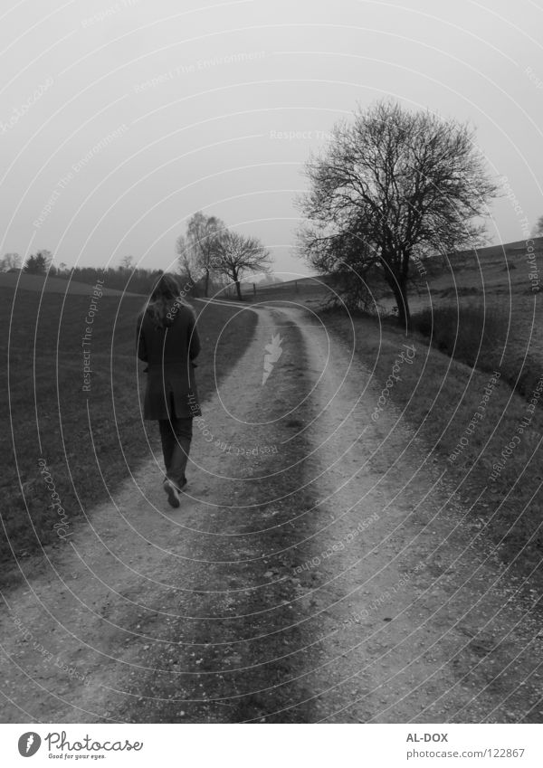 This way.......................................................... Autumn Future Cold Loneliness Grief Black & white photo Distress Lanes & trails Human being