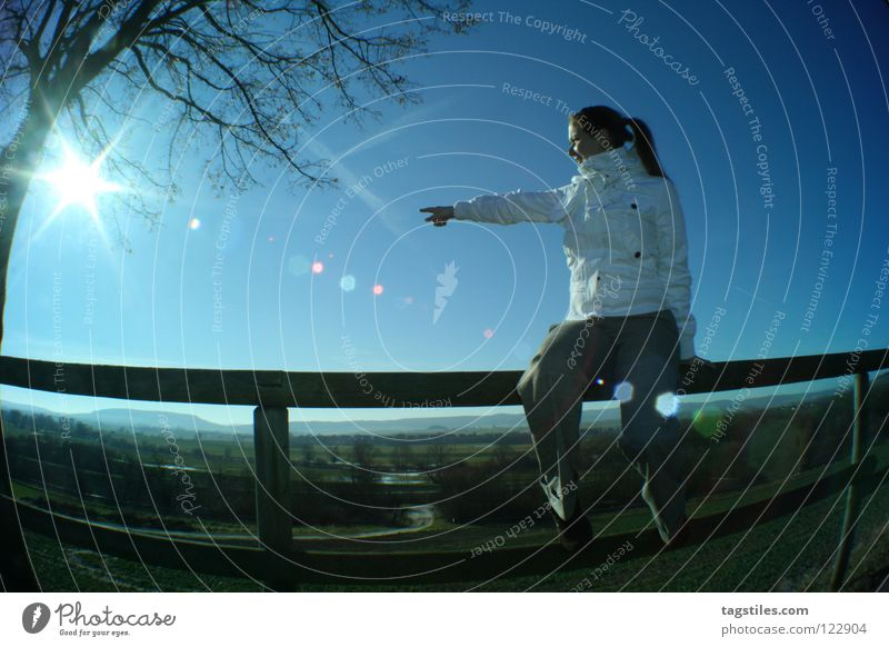 groundbreaking Groundbreaking Direction Signal Vacation & Travel Sunbeam Fisheye Blue Tree Fallen Woman Beautiful Celestial bodies and the universe Road marking