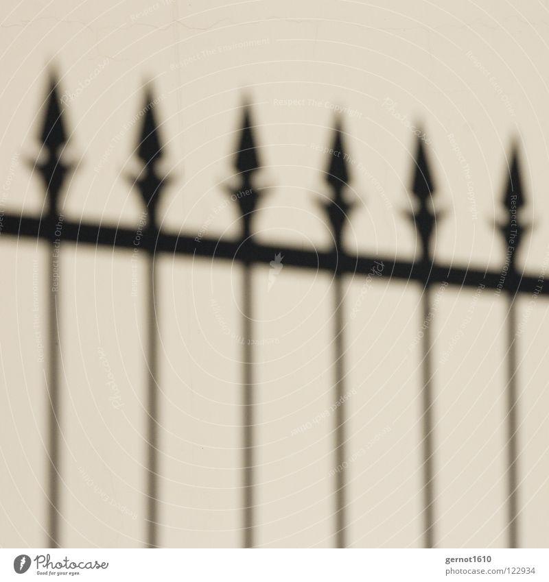 borderline Fence Border Black White Grating Grid Art Arts and crafts  Traffic infrastructure Black & white photo Shadow Point skewers Dart