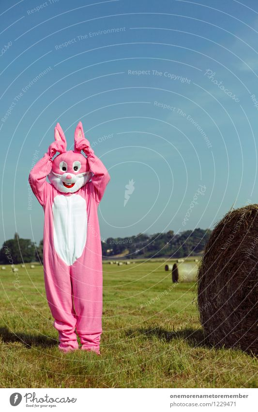 Did you... Art Work of art Esthetic Easter Hare & Rabbit & Bunny Hare ears Hare hunting Rabbit's foot Escape Fix Ready Pink Costume Carnival costume Meadow