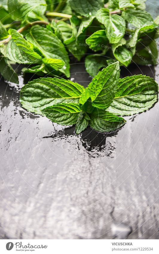 Fresh mint on a wet table Food Herbs and spices Organic produce Style Design Alternative medicine Healthy Eating Life Garden Table Fragrance Nature Mint