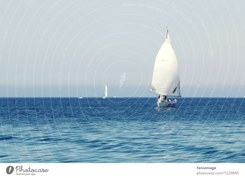 Blue Summer White Travel photography Warmth Sports Horizon Fresh Waves Wind Beautiful weather Driving Mediterranean Summer vacation Sailing Competition