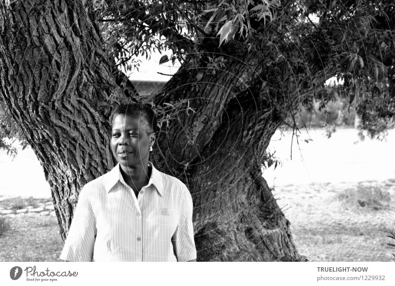 Black, beautiful, short-haired african woman with light peren earring stands smiling in a white shirt at a mighty old tree Style already Life Harmonious