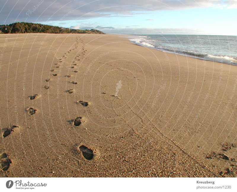 Traces in the sand New Zealand Beach Ocean Footprint Sunset Water Sand